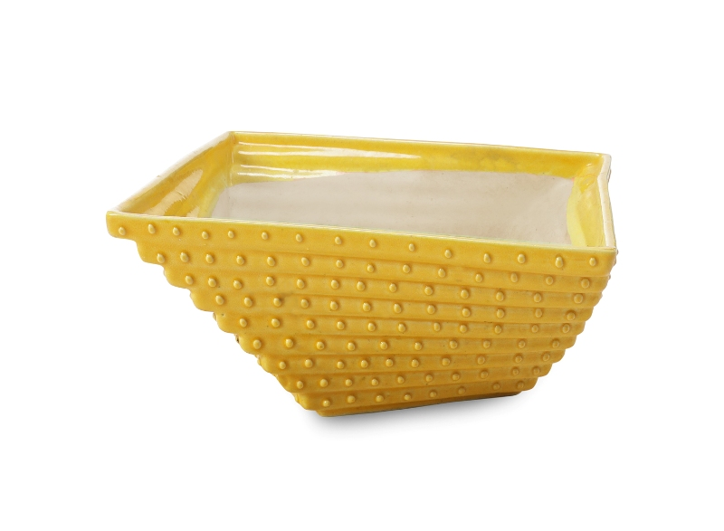 Dimension Shaped Pot Front View by the best online nursery shop Greendecor.