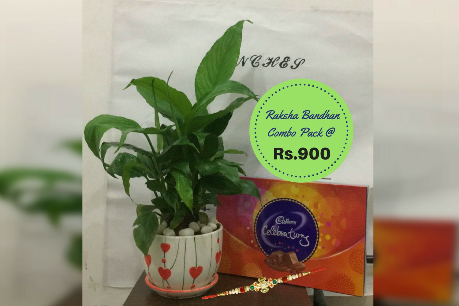 Raksha Bandhan Gift Combo Pack with Peace Lily Plant - Green Decor